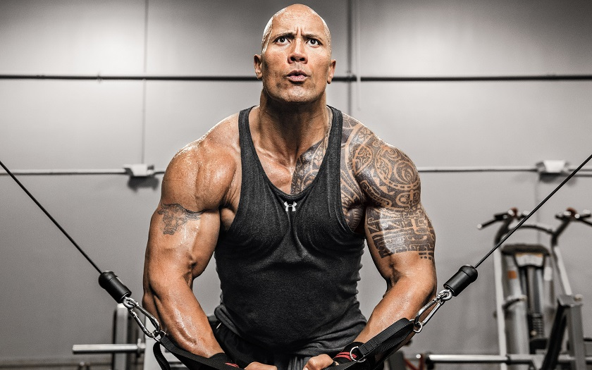 The Rock Dwayne Johnson Actor Fitness Athlete Gym Exercise WallpapersByte com 3840x2400