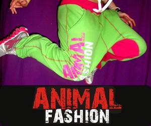 ANIMAL 300*250 FITNESS
