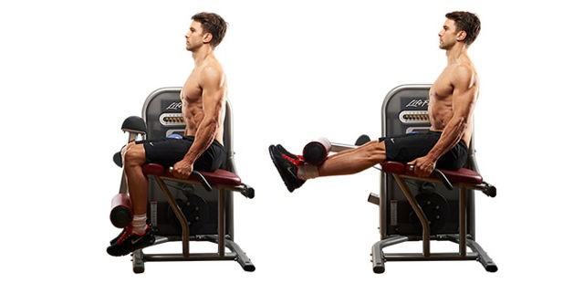 seated knee ext